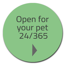 CTA-openforyourpet.png
