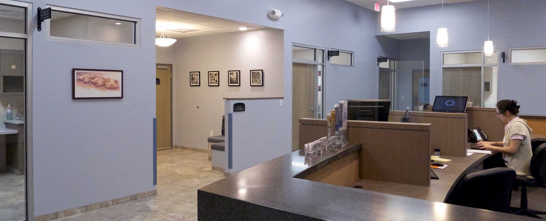 billing charleston veterinary referral center